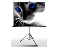 Экран на штативе Classic Crux 220x220 (T 213x213/1 MW-S0/B)